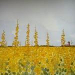 Farm & Honey Field